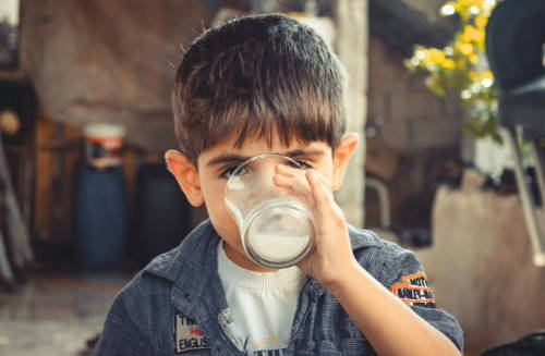 Menikmati susu formula soya