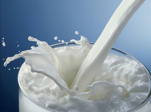 segarnya susu formula soya